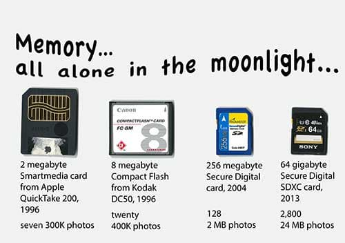 Cartoon: of Cats and memory cards